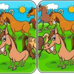 הבדלי בעלי חיים