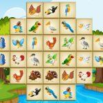 ציפורים מהג'ונג דלוקס