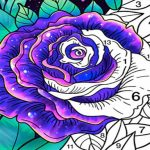 Coloring Book Color by Number