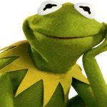 ספר צביעה לקרמיט הצפרדע
