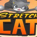 חתול סטרץ 'תלת ממדי