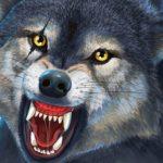 Wild Wolf Hunter