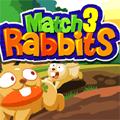 התאם 3 ארנבות